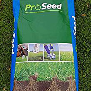 Sports Grass Seed, Premium Quality for Pro Sport