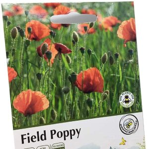 Common Field Poppy Annual Seeds Wild Flower