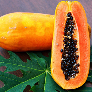 Carica Papaya 'Honeydew' Seeds