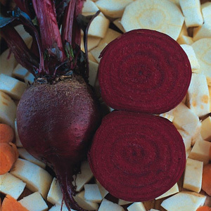 Beetroot 'Detroit Globe' Seeds