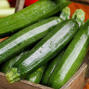 Courgette Green Bush F1 Seeds