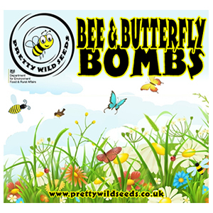 Bee & Butterfly Seed Bombs Boxed