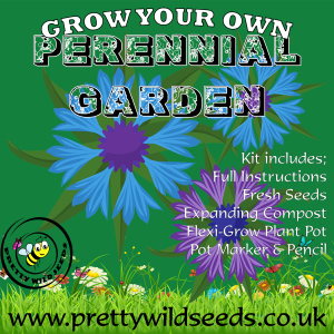 Grow Your Own Perennial Garden Kit
