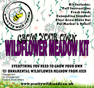 Grow Your Own Wildflower Meadow Kit