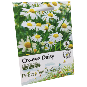 Ox-Eye Daisy Seeds In Pictorial Packets