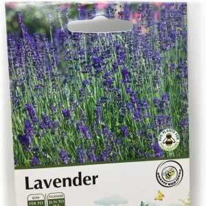 Lavender Seeds In Pictorial Packets